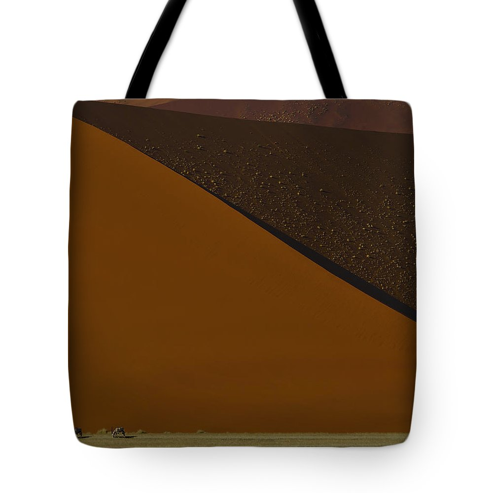 Gemsbok Tote Bag featuring the photograph Oryx On The Edge by Tony Beck