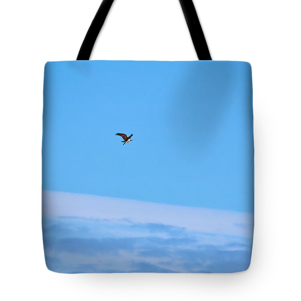Finland Tote Bag featuring the photograph Osprey And A Pike High Over The Clouds by Jouko Lehto