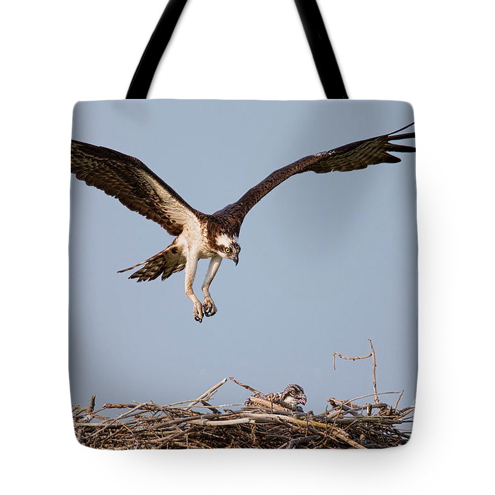 Osprey Tote Bag featuring the photograph Osprey Returning To Nest by Jerry Fornarotto