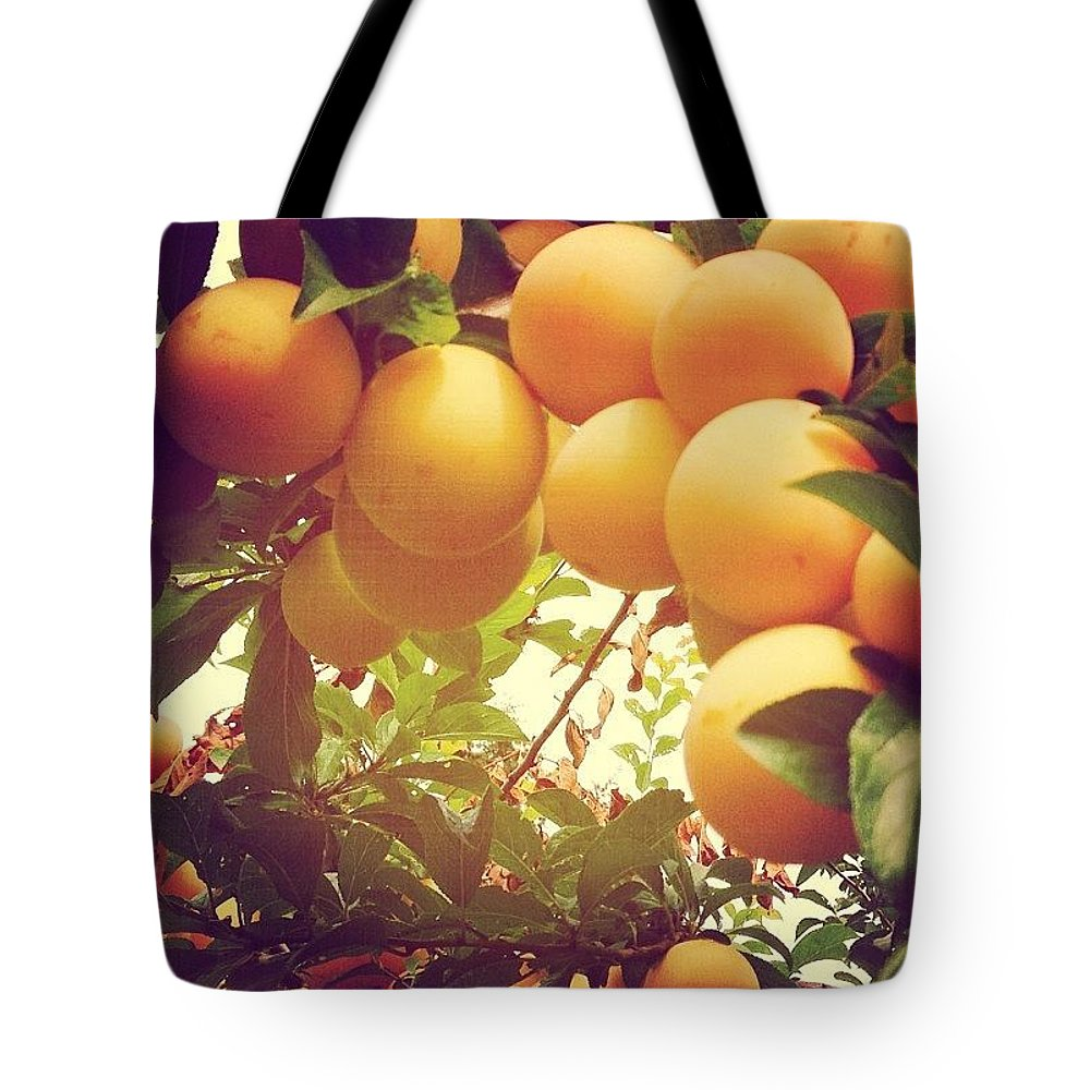 Plums Tote Bag featuring the photograph Our Plum Tree Is Loaded This Year...any by Blenda Studio