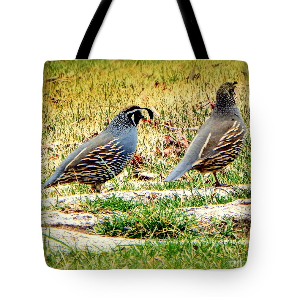 Acrylic Prints Tote Bag featuring the photograph Out For A Walk by Bobbee Rickard