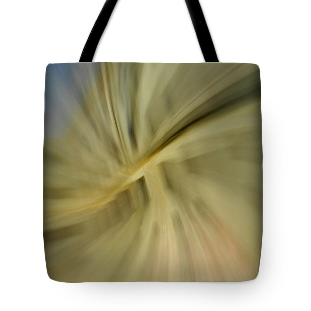 Architecture Tote Bag featuring the photograph Out Of Control by Donna Blackhall