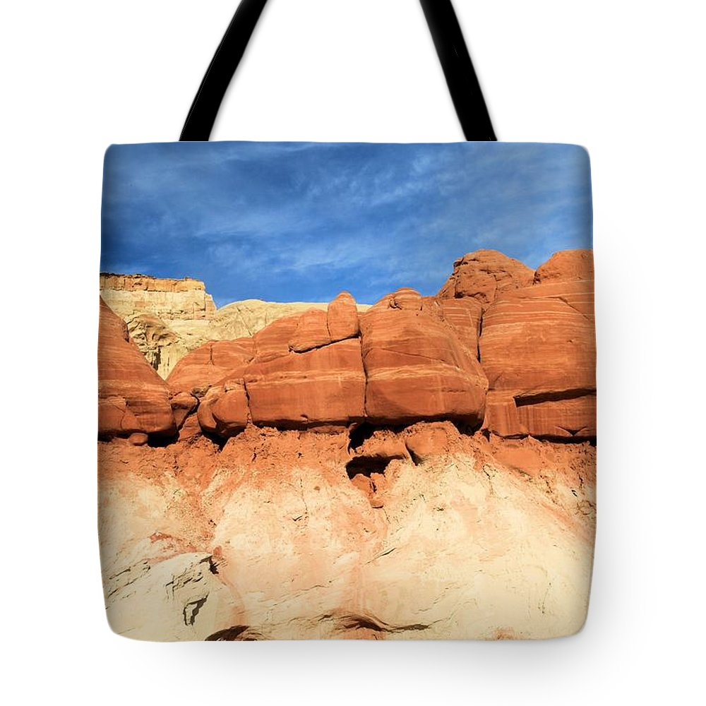 Toadstools Tote Bag featuring the photograph Out Of Place by Adam Jewell