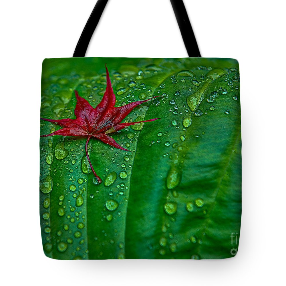 Maple Leaf Tote Bag featuring the photograph Out Of Place by Rod Wiens