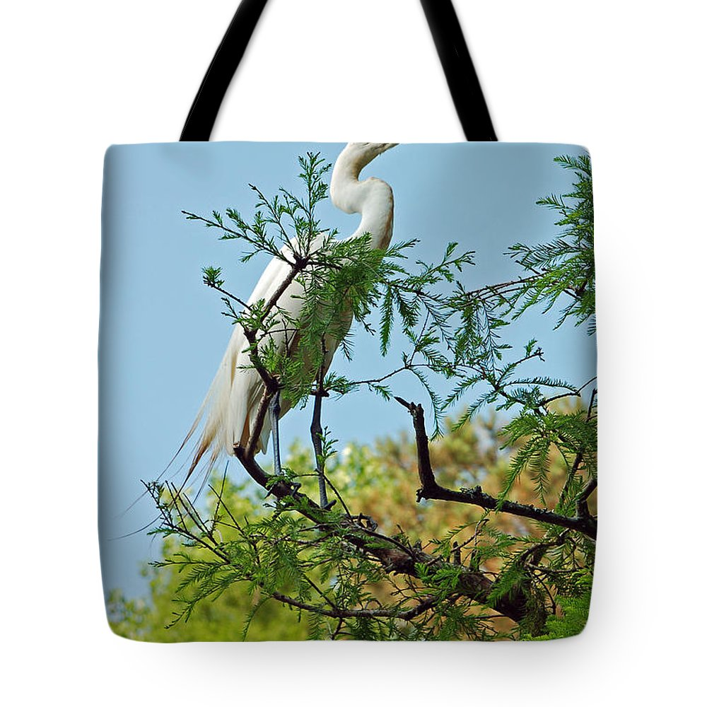White Egret Tote Bag featuring the photograph Out On A Limb by Suzanne Gaff