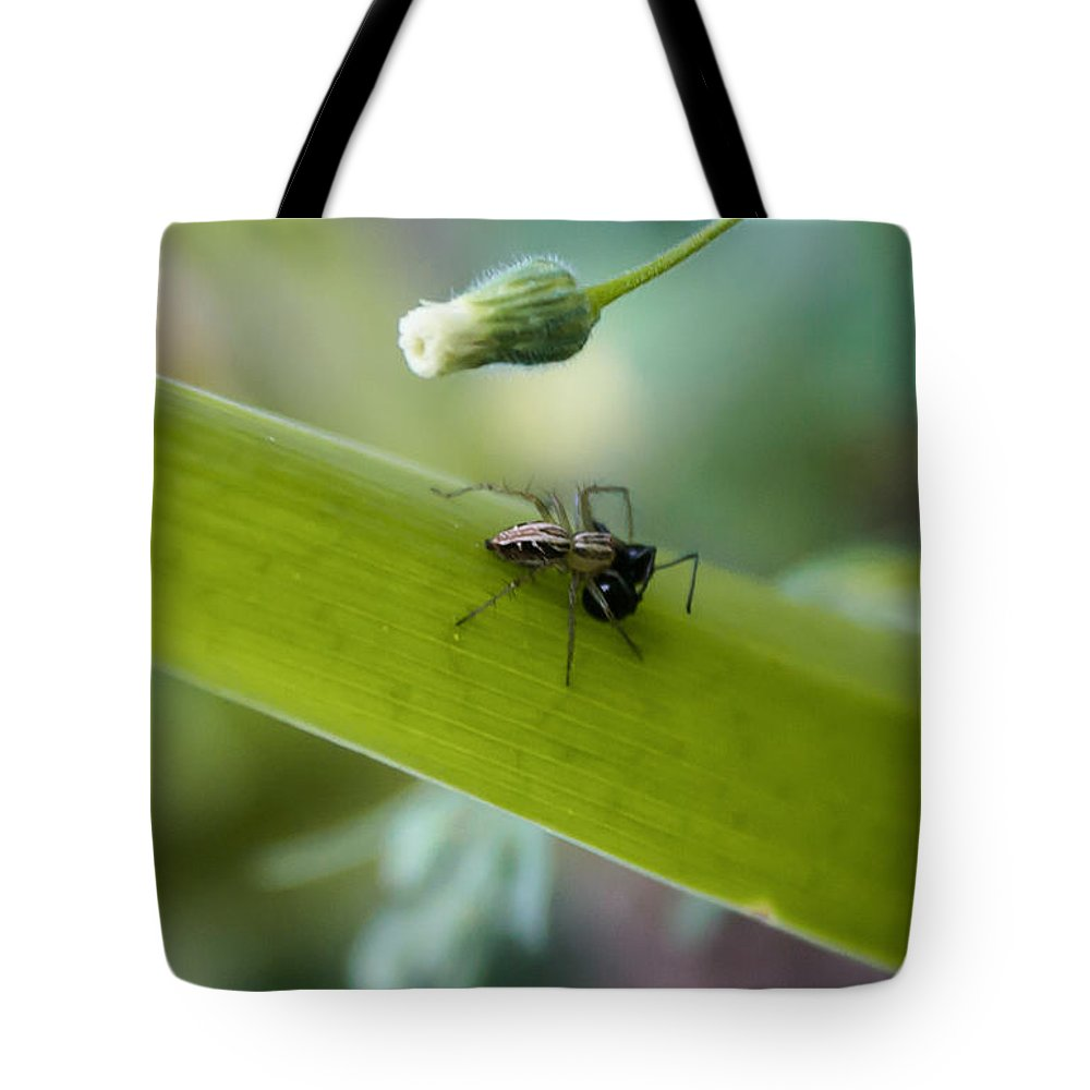 Spider Tote Bag featuring the photograph Out To Lunch by Michael Podesta