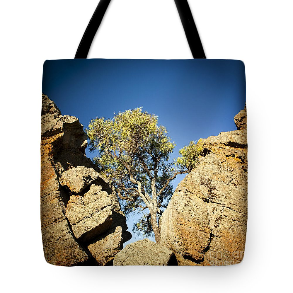 Australia Tote Bag featuring the photograph Outback Tree by Tim Hester