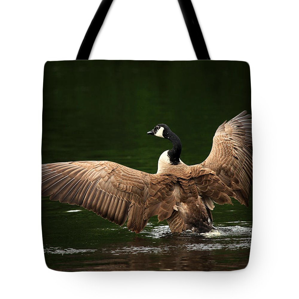 Goose Tote Bag featuring the photograph Outstretched Wings by Karol Livote