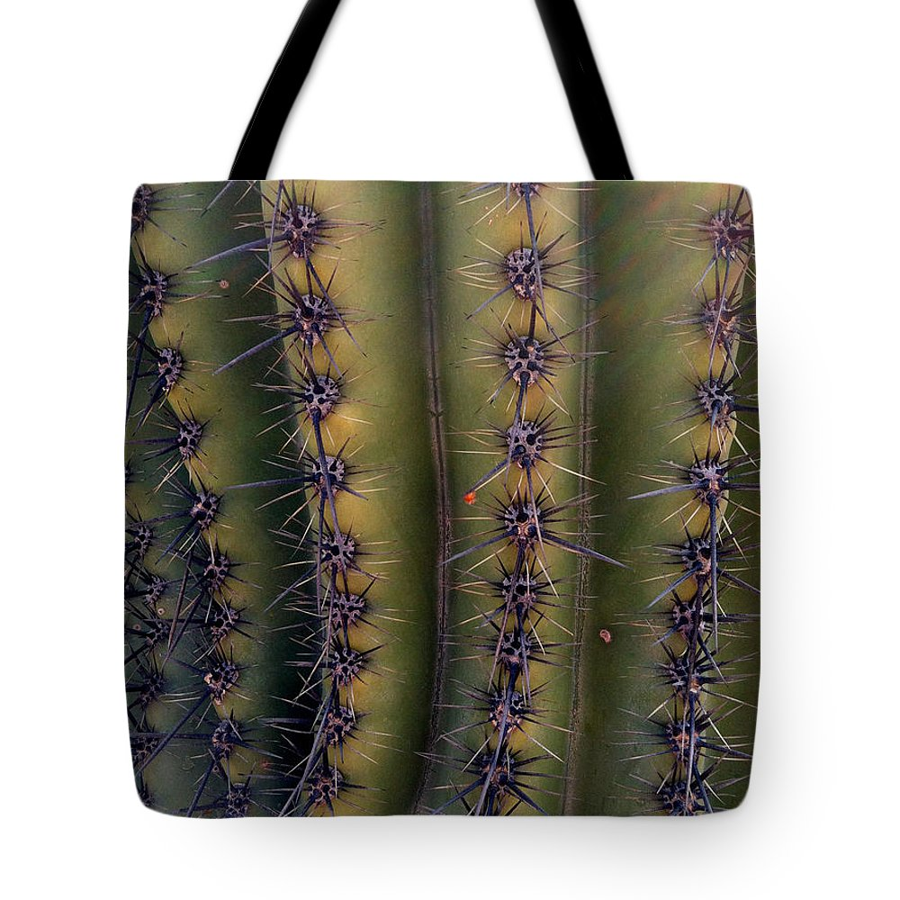 Cacti Tote Bag featuring the photograph Owie 11 by Marlene Burns