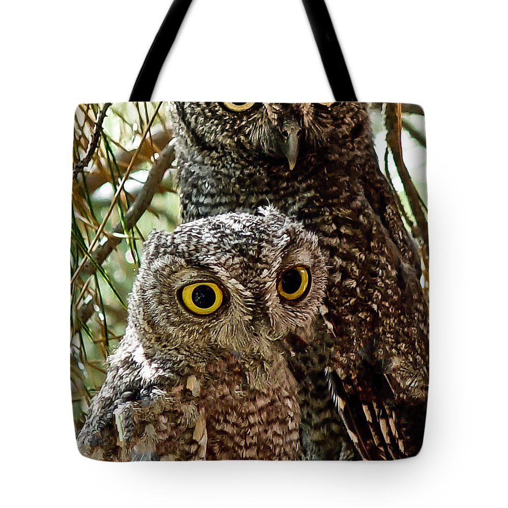 Arizona Tote Bag featuring the photograph Owls From Amado Arizona by James Gordon Patterson