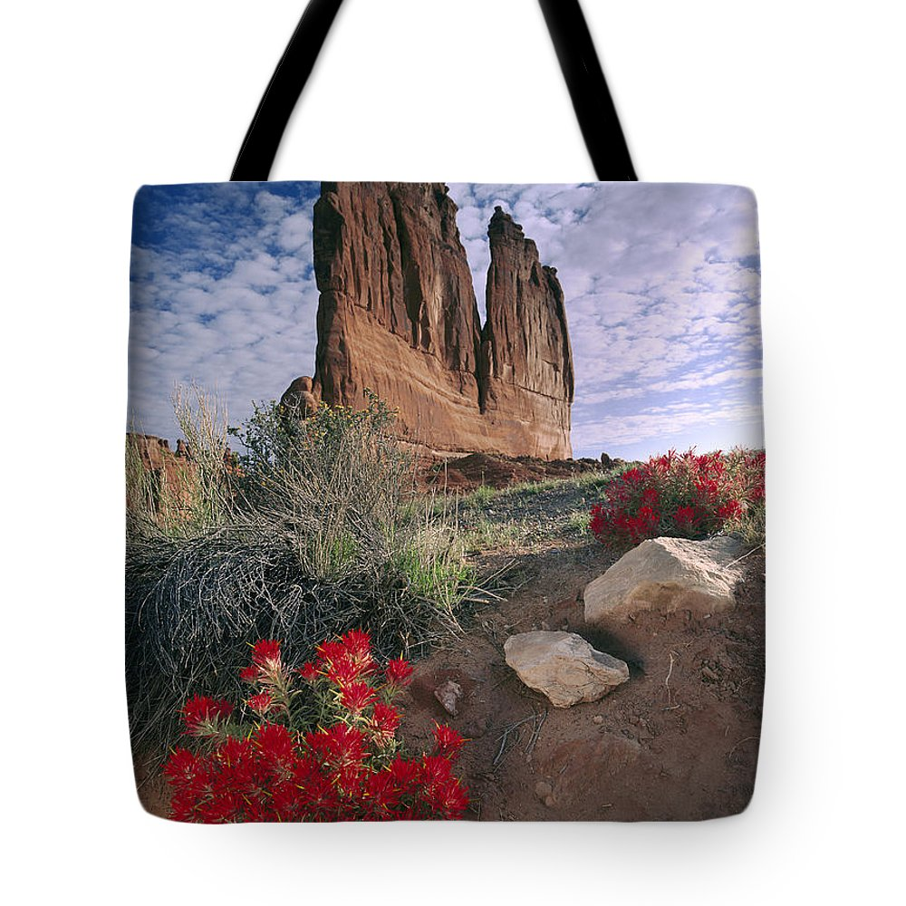 00175001 Tote Bag featuring the photograph Paintbrush And Organ Rock by Tim Fitzharris