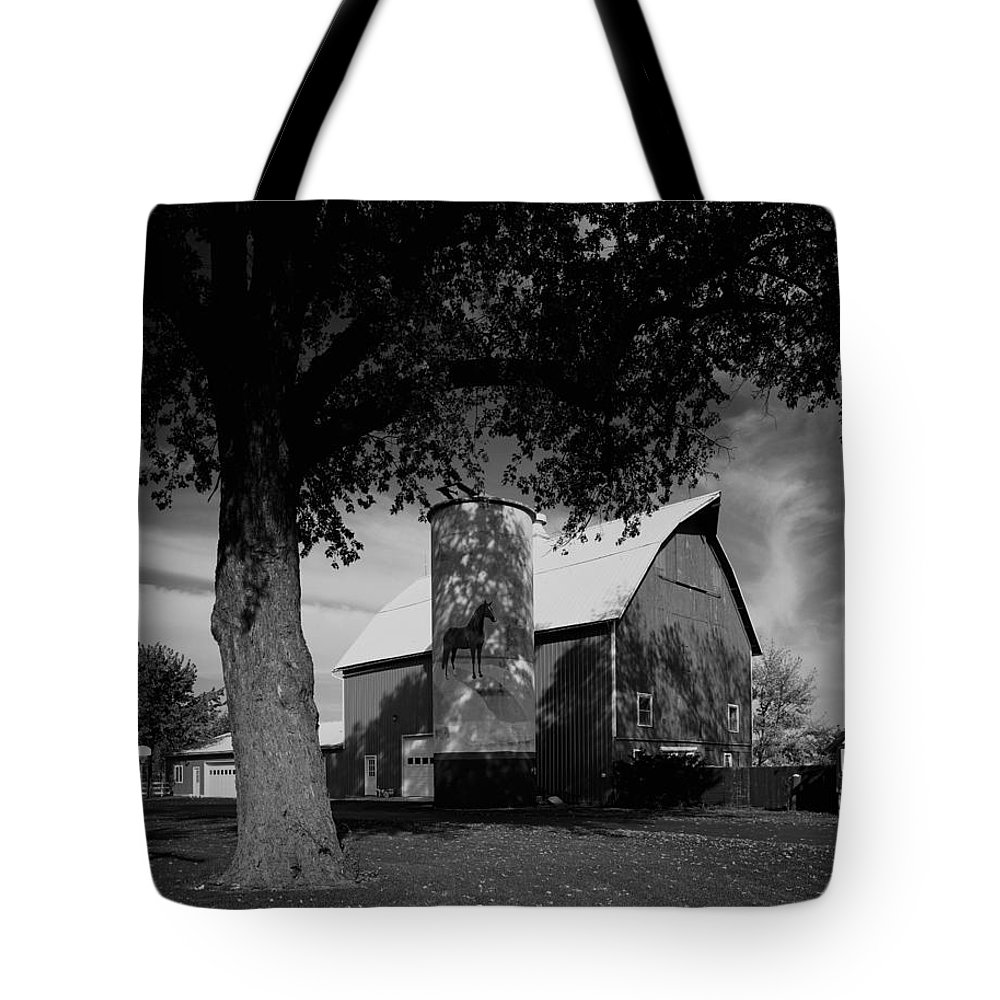 Farm Tote Bag featuring the photograph Painted Silo On A Farm by Mountain Dreams