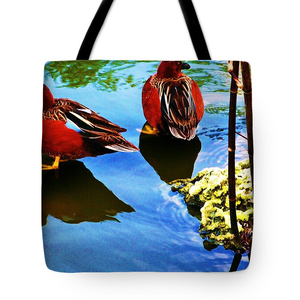 Ducks Tote Bag featuring the photograph Pair by Chuck Hicks