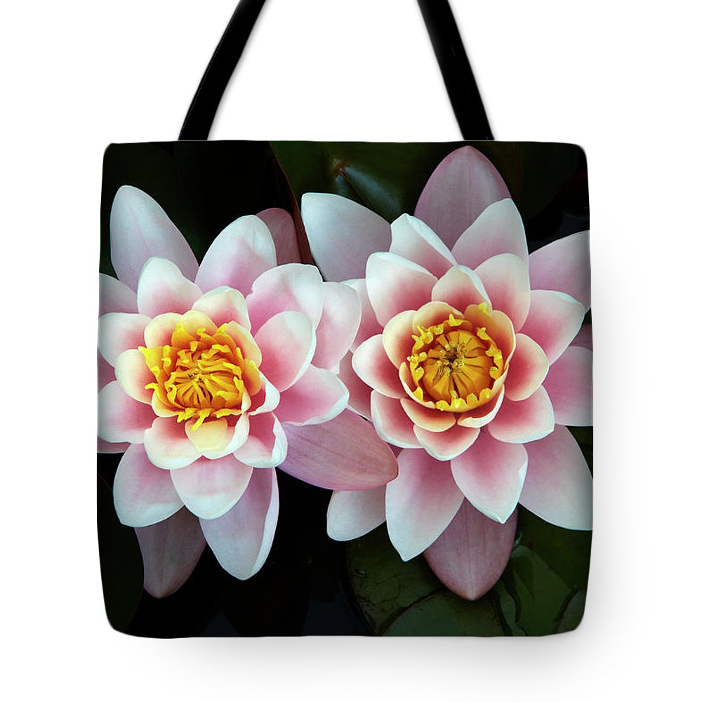 Cambridgeshire Tote Bag featuring the photograph Pair Of Water Lilys by Allan Baxter