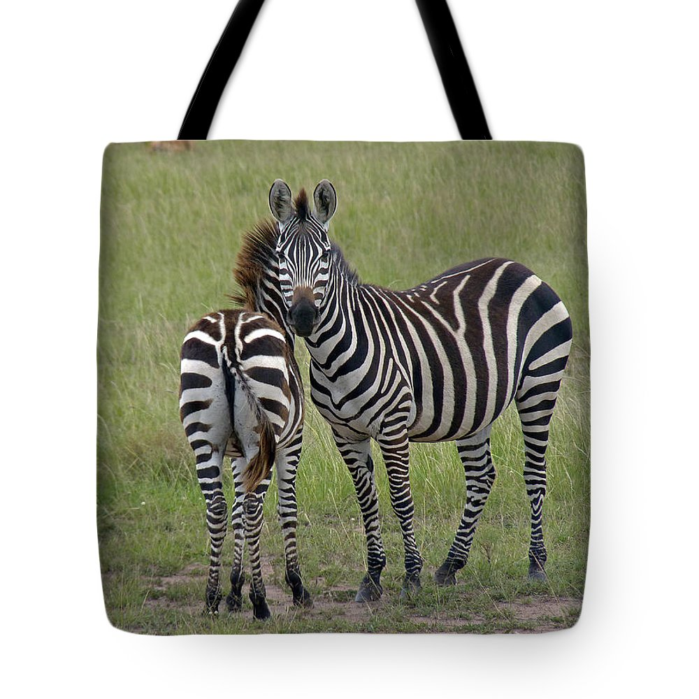 Zebra Tote Bag featuring the photograph Pair Of Zebra by Tony Murtagh