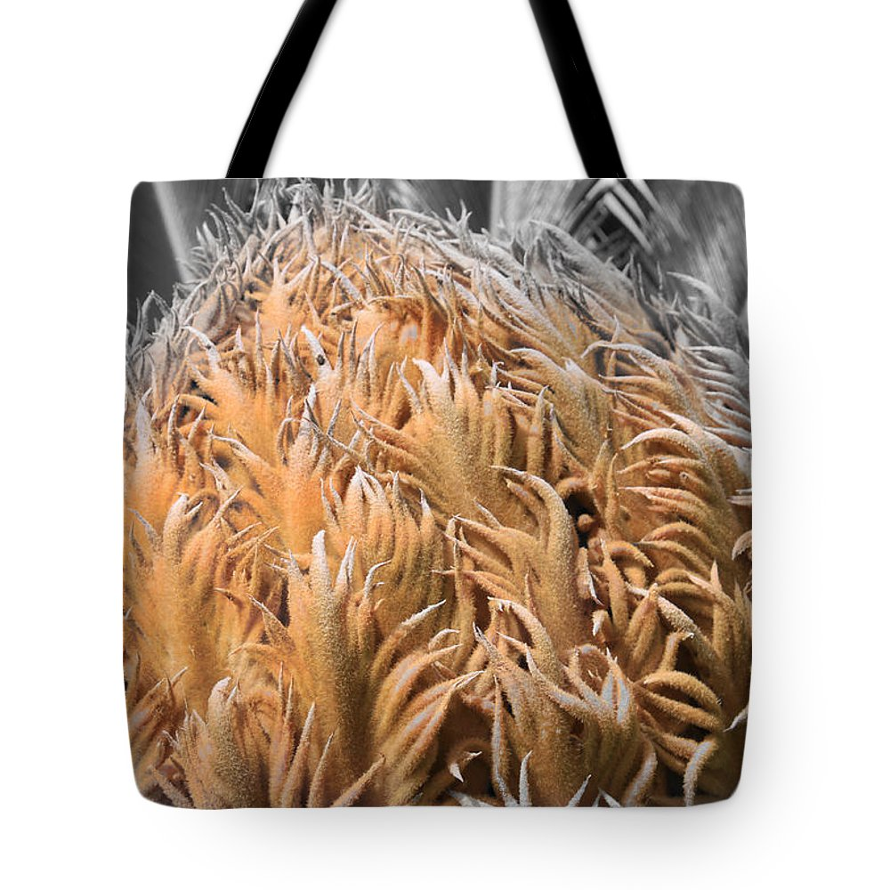 Augusta Stylianou Tote Bag featuring the photograph Palm Flower by Augusta Stylianou