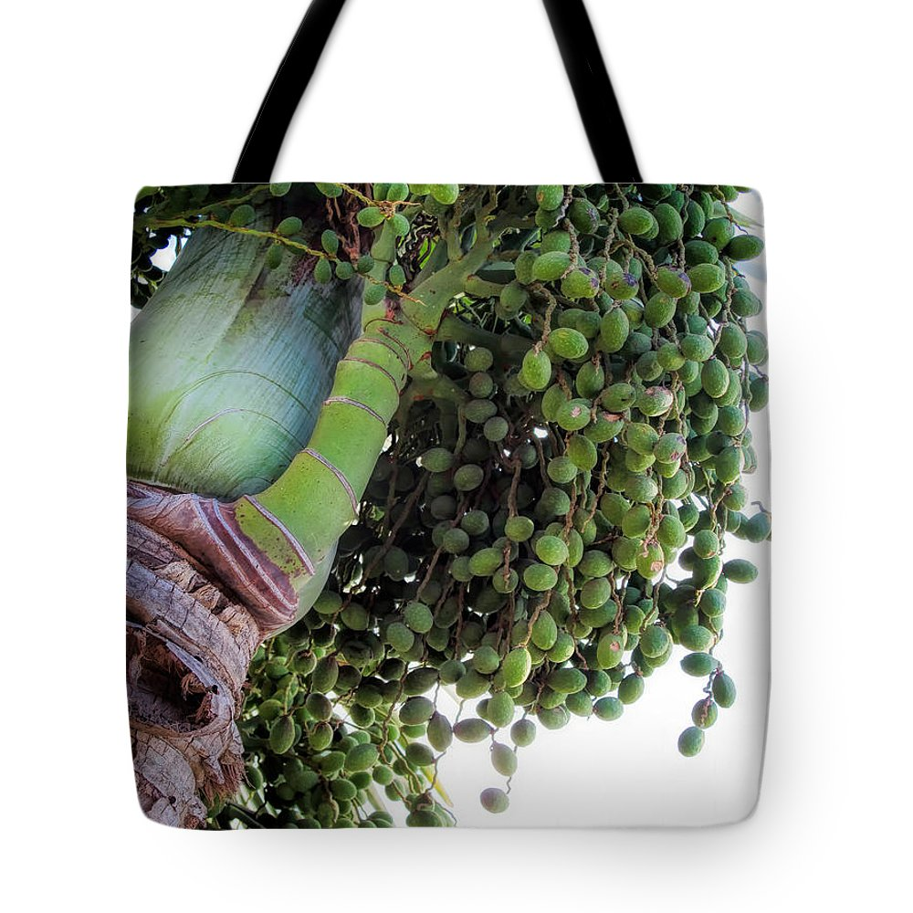 Hawaii Tote Bag featuring the photograph Palm Tree 7 by Dawn Eshelman