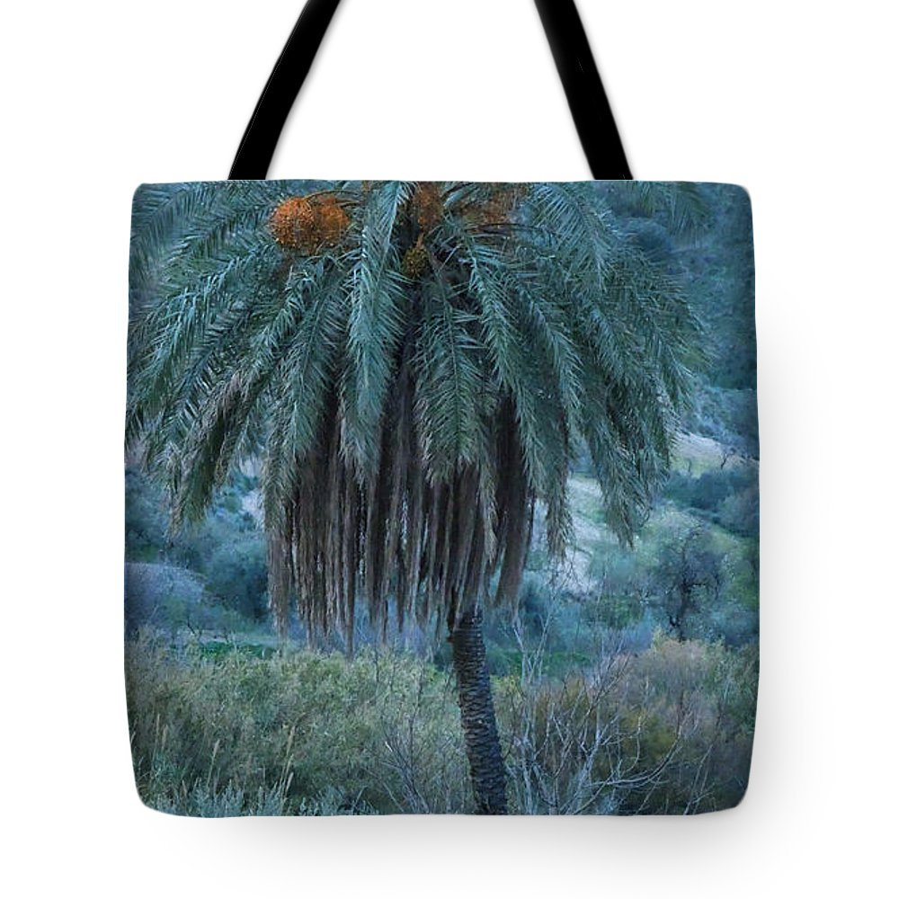 Colette Tote Bag featuring the photograph Palm Tree Almanzora Mountain Spain by Colette V Hera Guggenheim