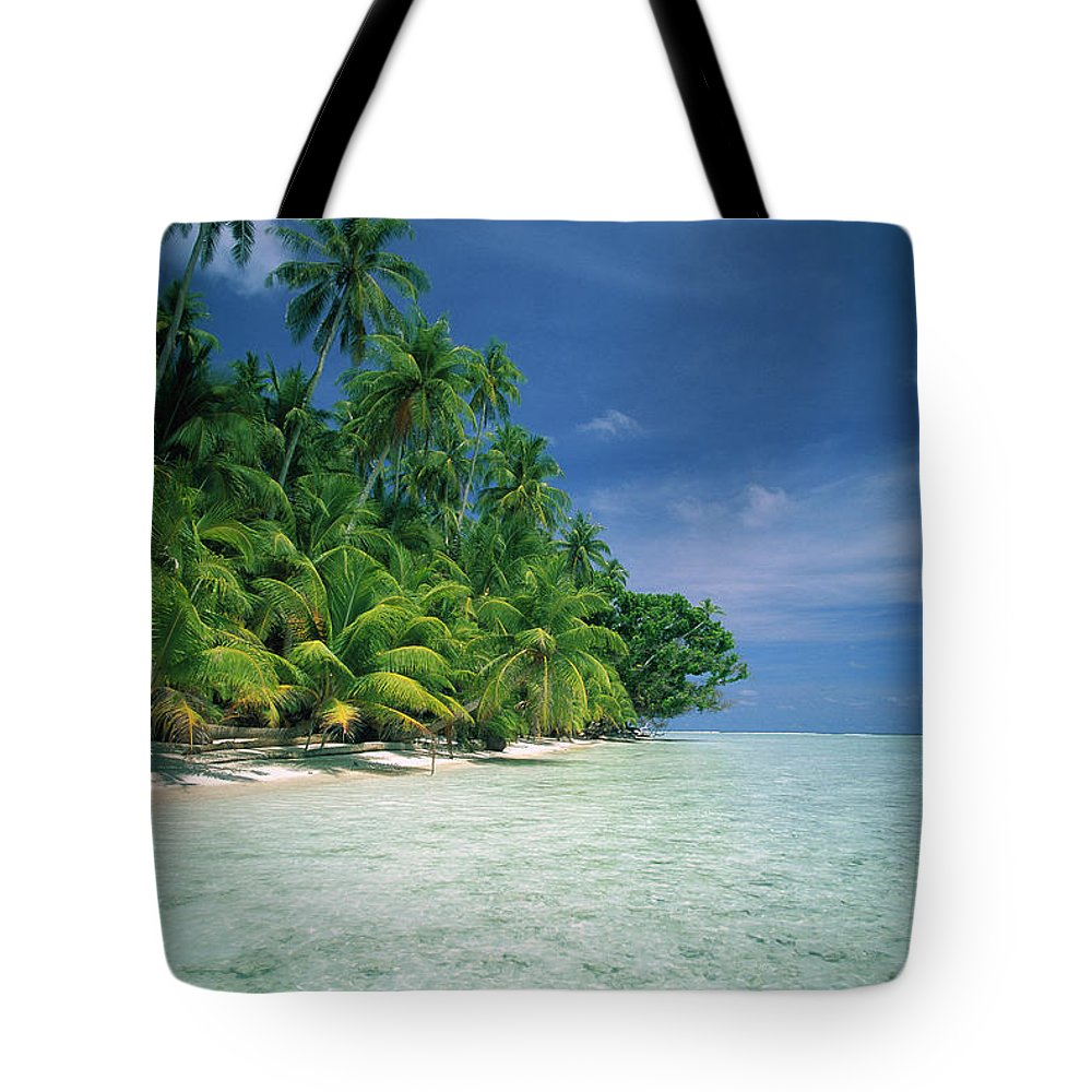 Ai Tote Bag featuring the photograph Palm Tree Lined Beach Papua New Guinea by Kevin Deacon
