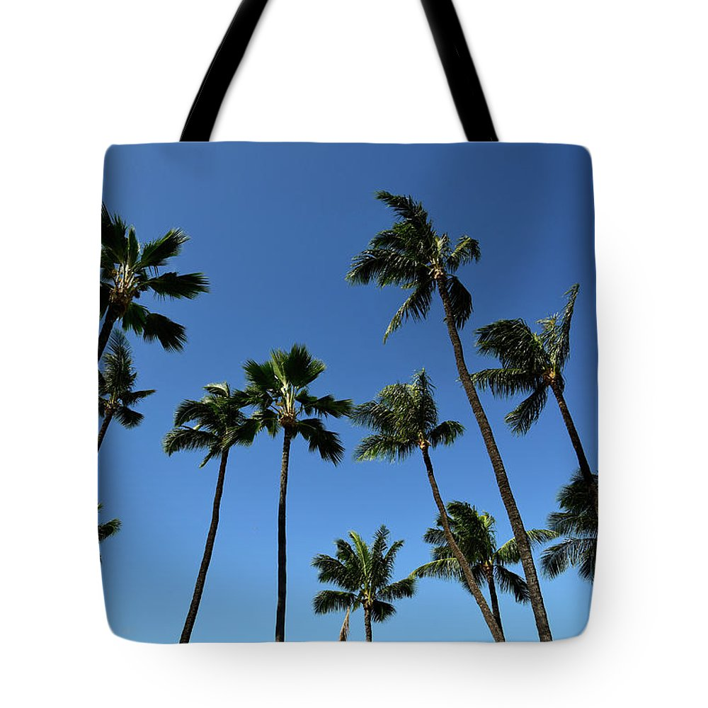 Horizontal Tote Bag featuring the photograph Palm Trees Against A Clear Blue Sky by Stocktrek Images