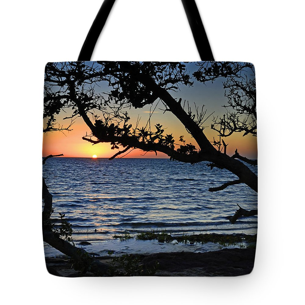 Pamlico Sound Tote Bag featuring the photograph Pamlico Sound Through The Trees by Eric Albright