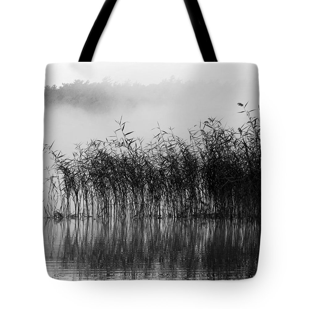 Pampas Grass Tote Bag featuring the photograph Pampas Grass In Fog by Dianne Cowen