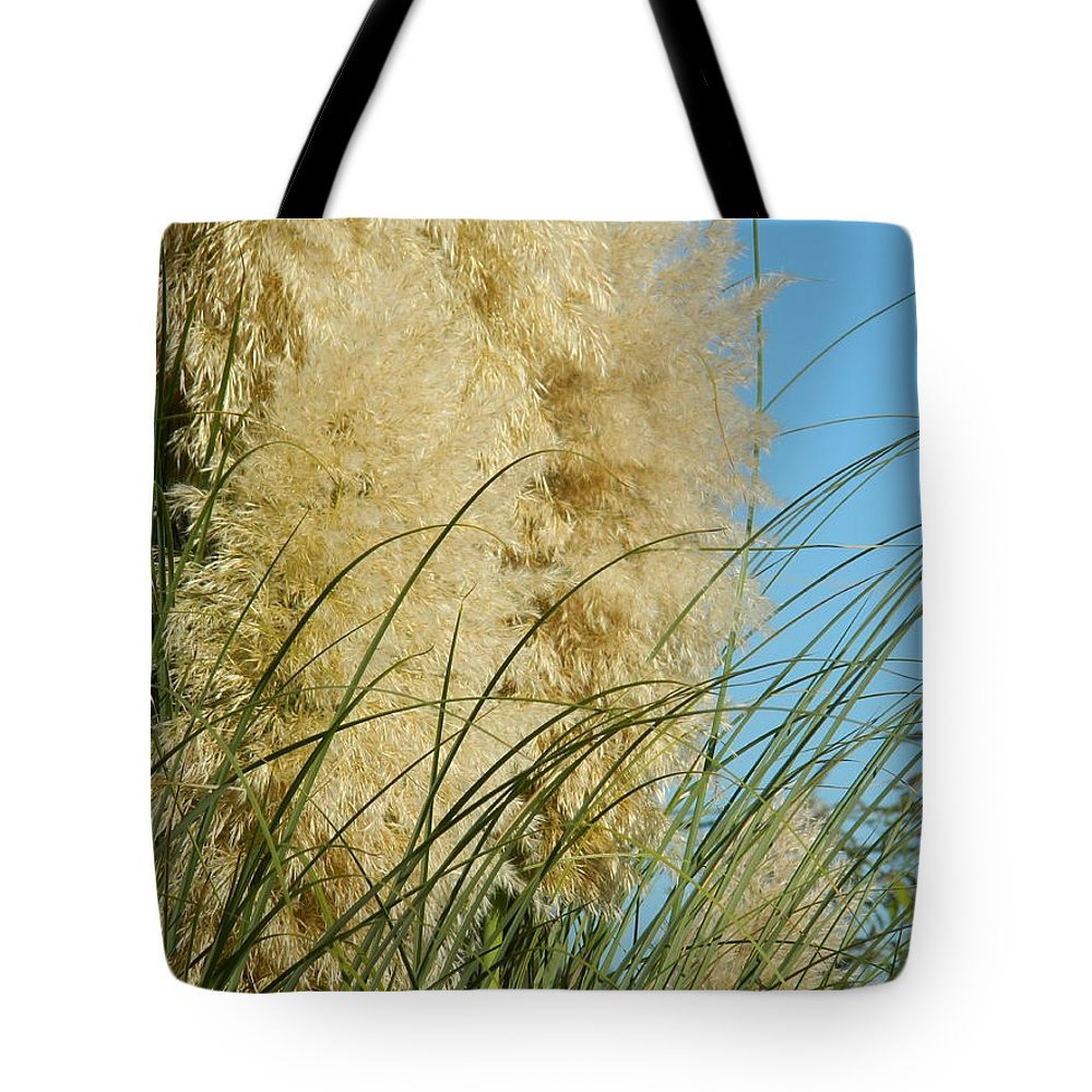 Pampas Tote Bag featuring the photograph Pampas Grass by Nicki Bennett