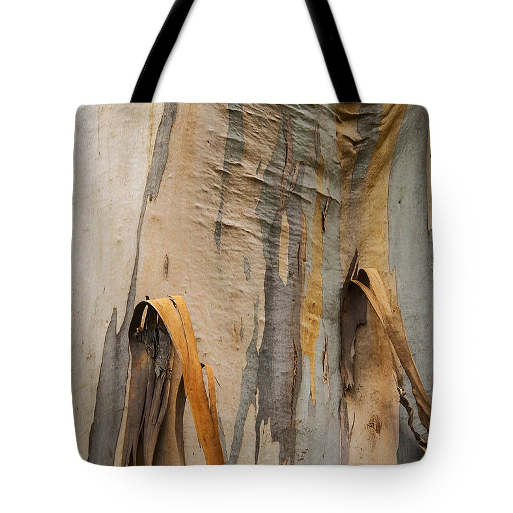 Lake Te Anau Tote Bag featuring the photograph Paper Bark by Bob Phillips