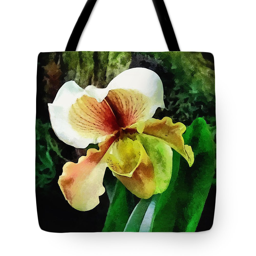 Paphiopedilum Tote Bag featuring the photograph Paph Hellas Westonbirt Orchid by Susan Savad