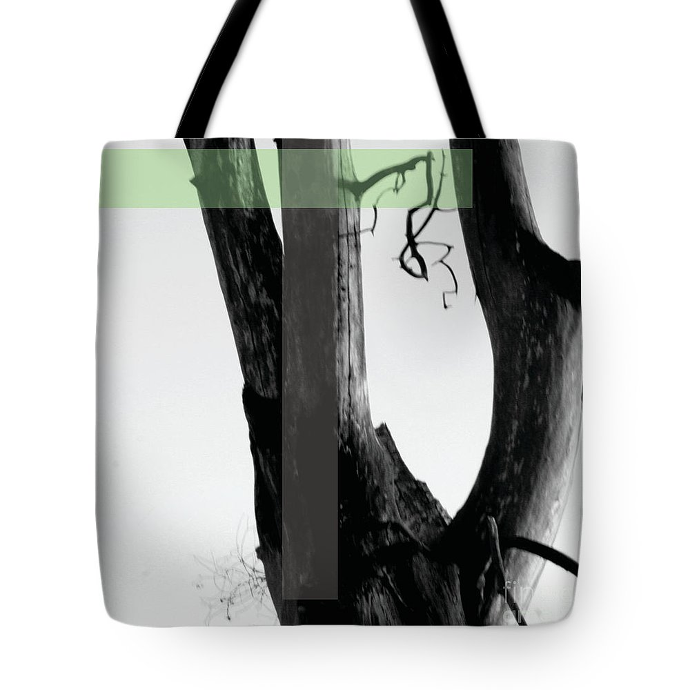 Jamie Lynn Gabrich Tote Bag featuring the photograph Parish by Jamie Lynn