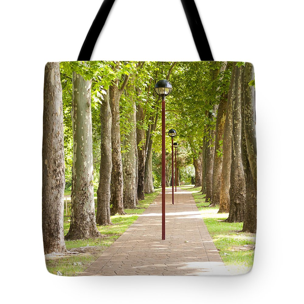 Trees Tote Bag featuring the photograph Park Footpath by Tim Hester