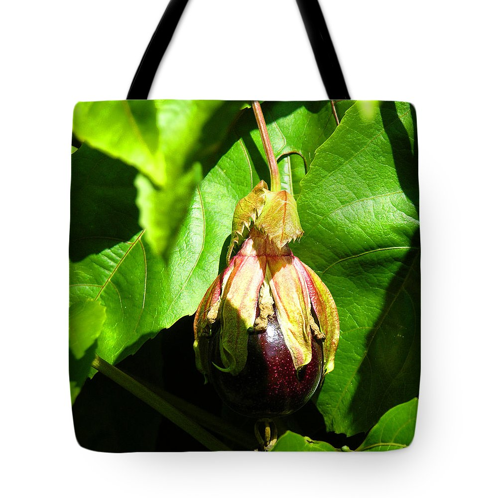 Passion Fruit Tote Bag featuring the photograph Passion Fruit 10-18-13 By Julianne Felton by Julianne Felton