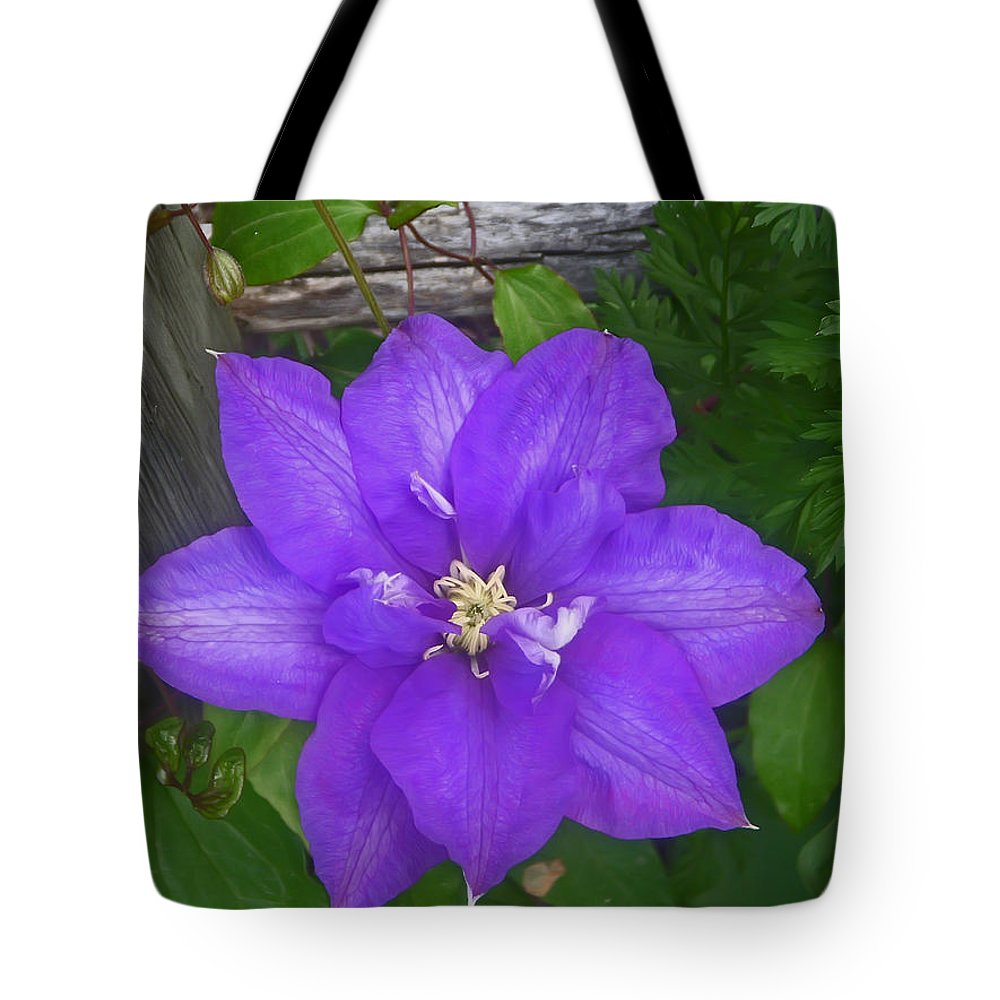 Flower Tote Bag featuring the photograph Passion Vine by Aimee L Maher ALM GALLERY