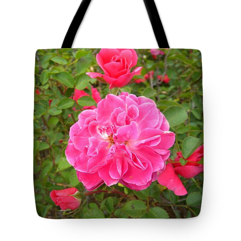 Roses Tote Bag featuring the photograph Passionate Pink Springtime by Matthew Seufer