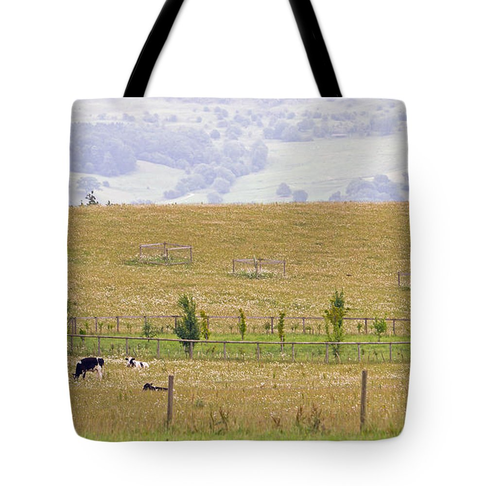 Grazing Tote Bag featuring the photograph Pastoral by Keith Armstrong