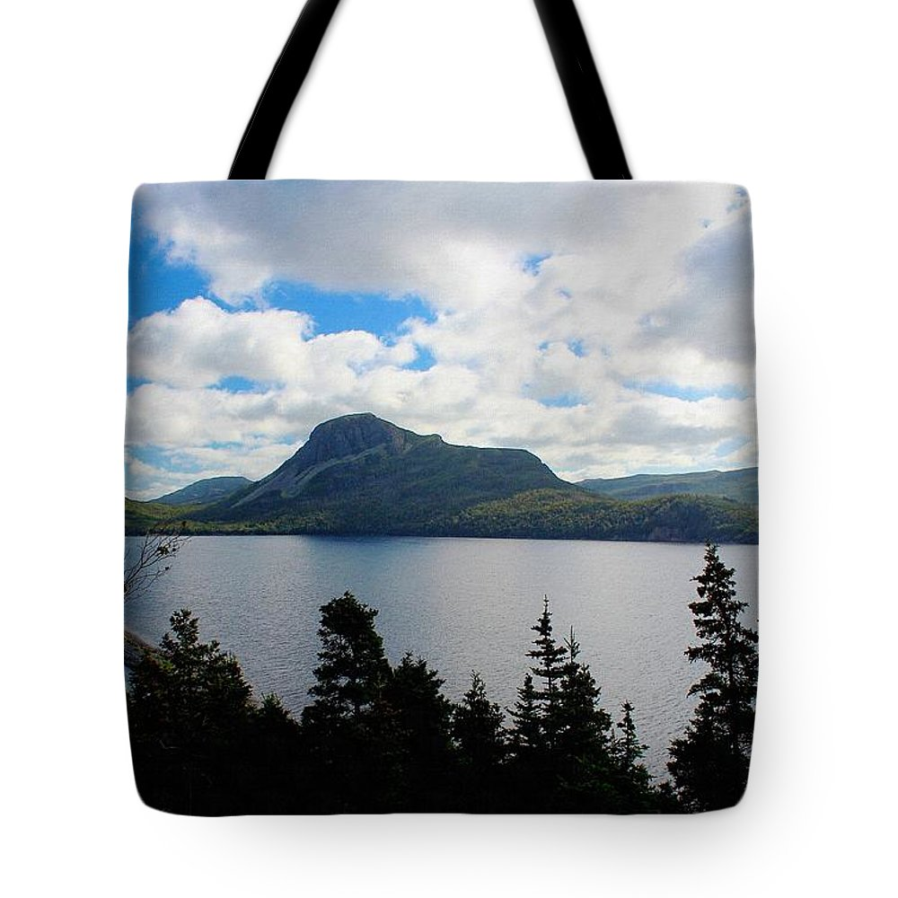 Pastoral Scene By The Ocean Tote Bag featuring the photograph Pastoral Scene By The Ocean by Barbara Griffin