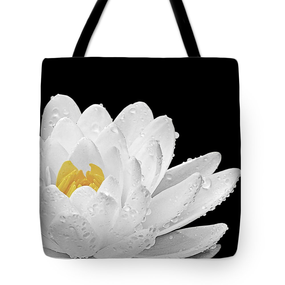 White Waterlily Tote Bag featuring the photograph Patch Of Gold by Gill Billington