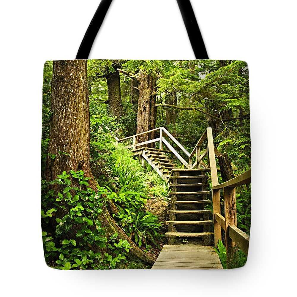 Rainforest Tote Bag featuring the photograph Path In Temperate Rainforest by Elena Elisseeva