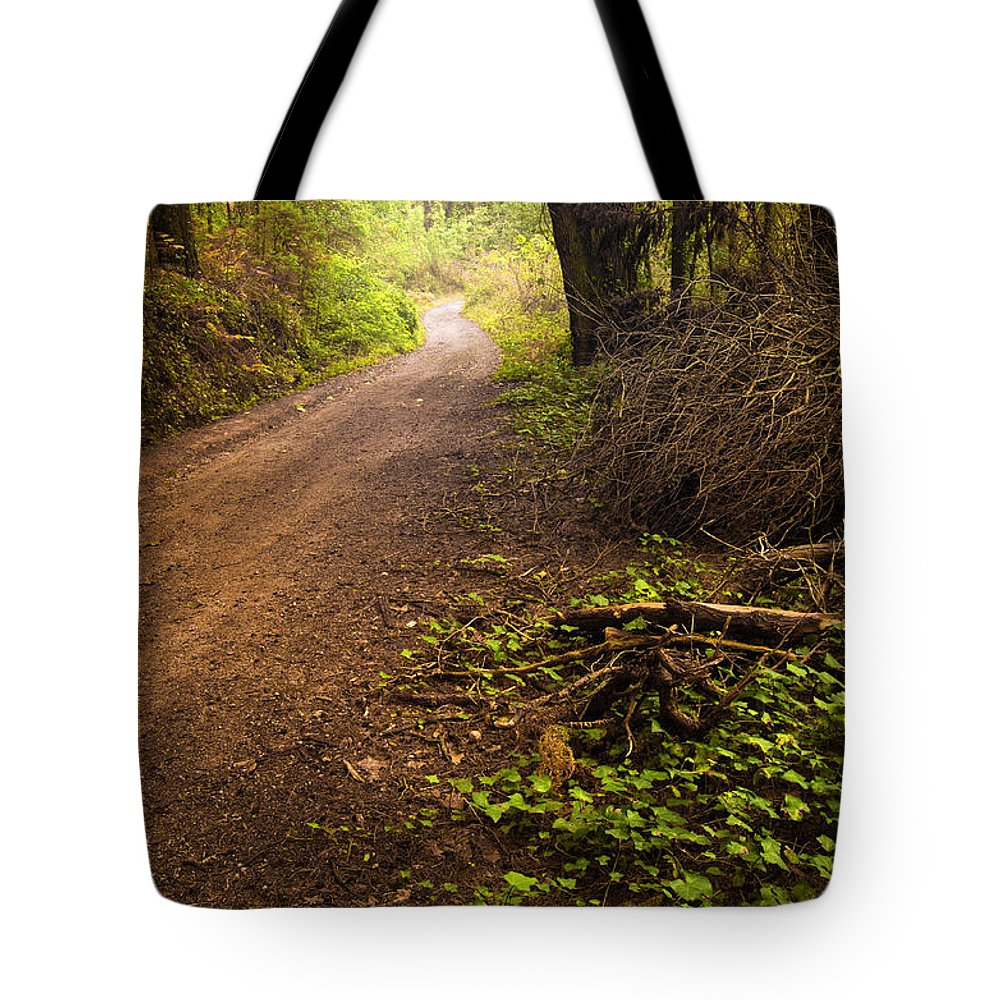 Autumn Tote Bag featuring the photograph Pathway In The Woods by Carlos Caetano