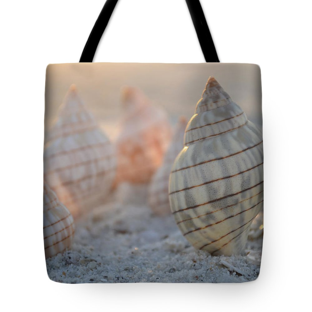 Seashell Tote Bag featuring the photograph Patience And Faith by Melanie Moraga