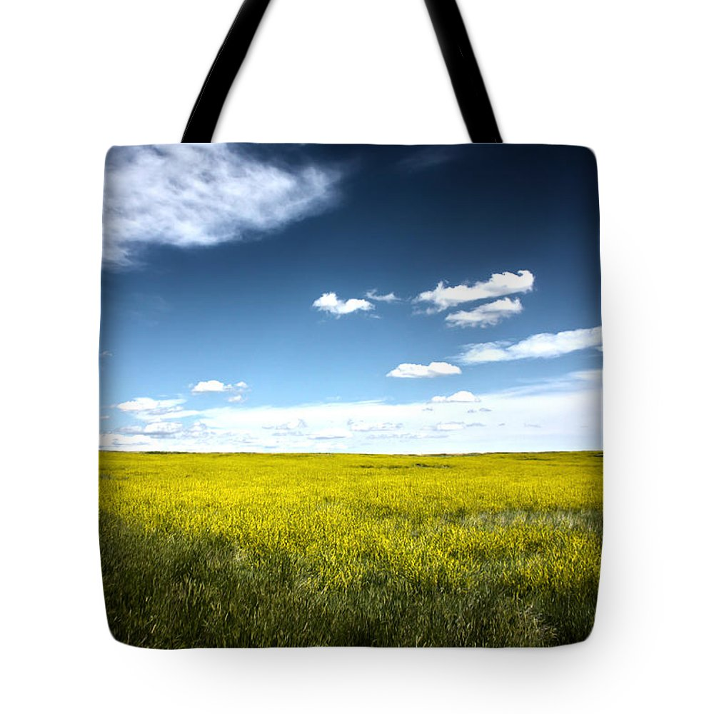 Pawnee National Grasslands Tote Bag featuring the photograph Pawnee Grasslands by Shane Bechler