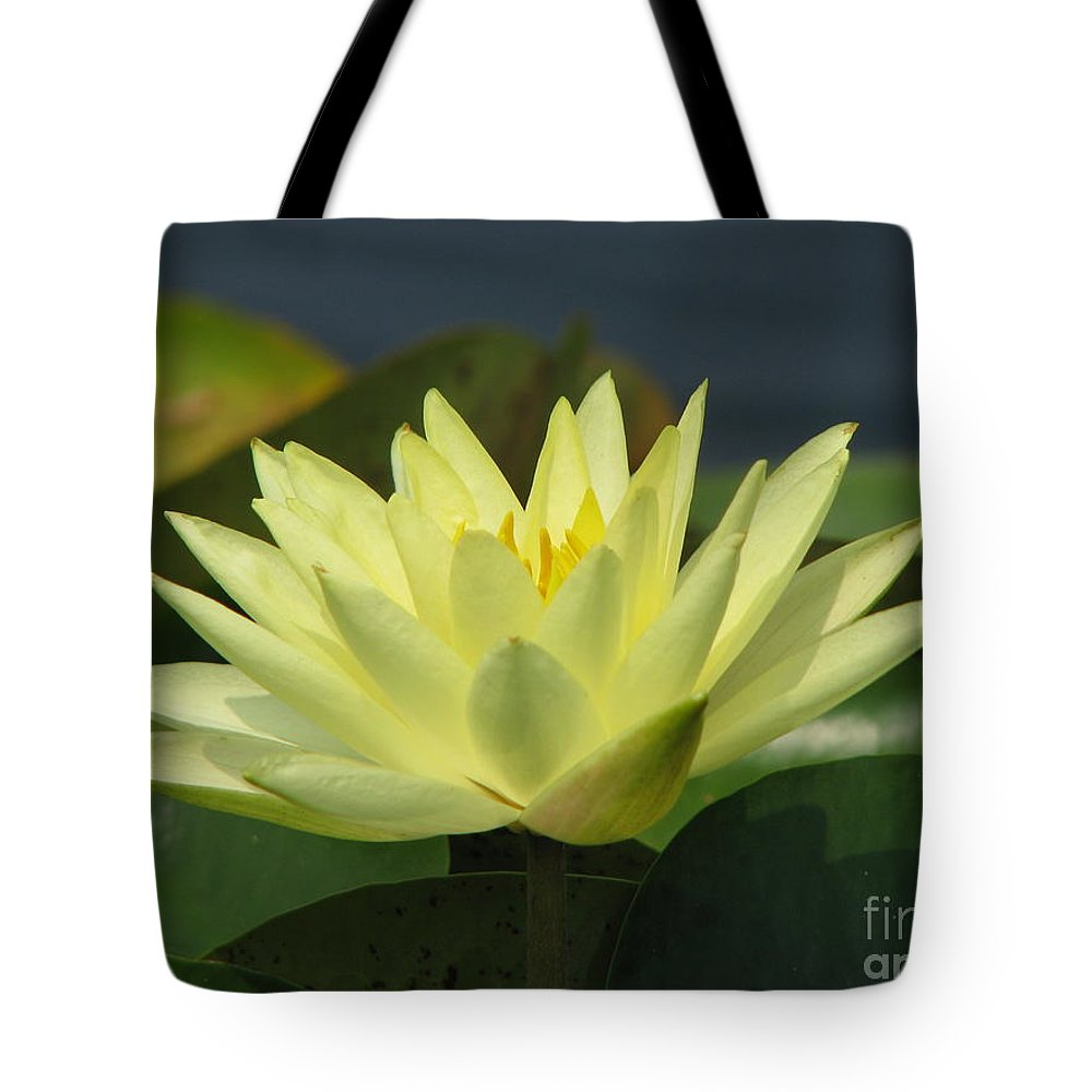 Lillies Tote Bag featuring the photograph Peace by Amanda Barcon