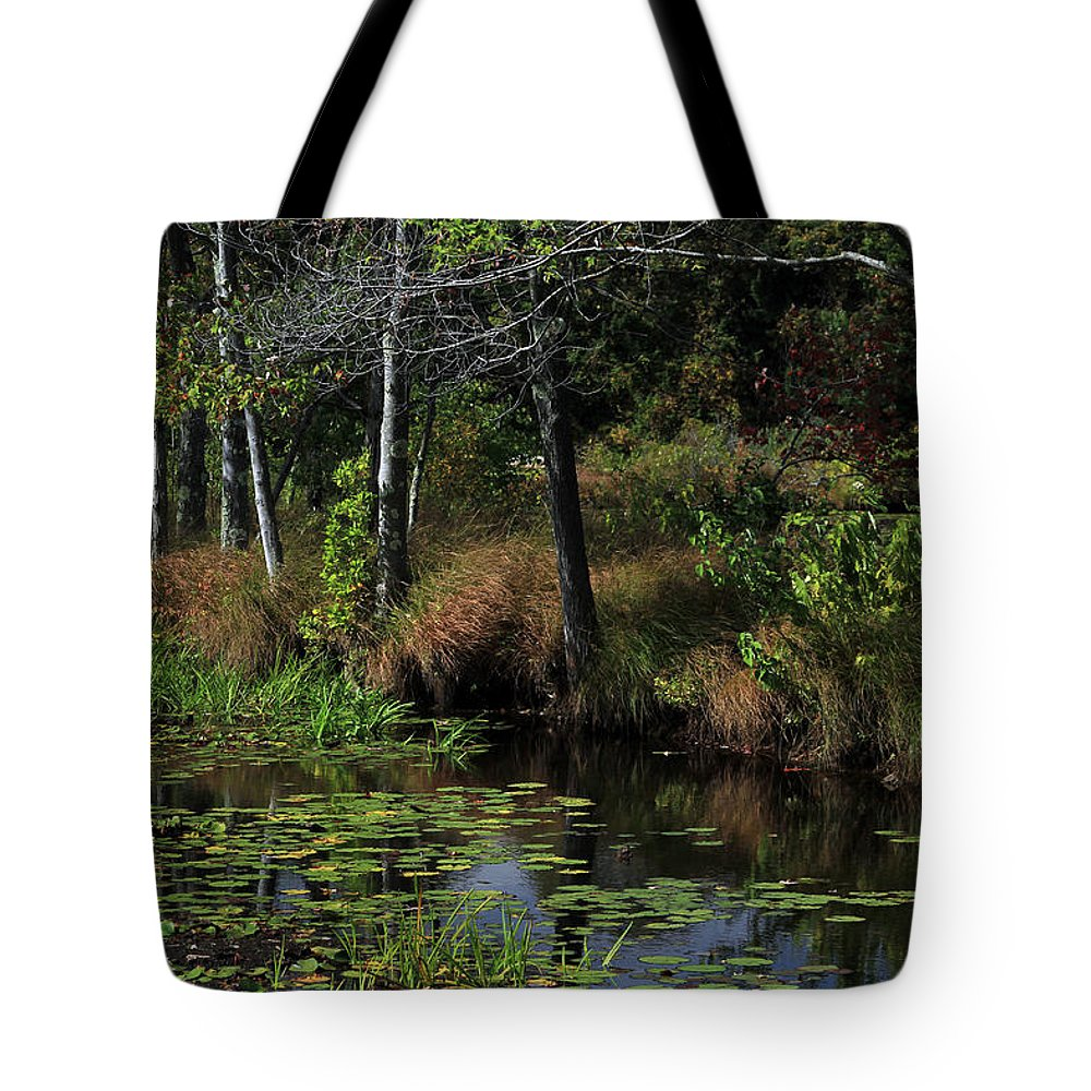 Landscape Tote Bag featuring the photograph Peaceful Pond by Karol Livote