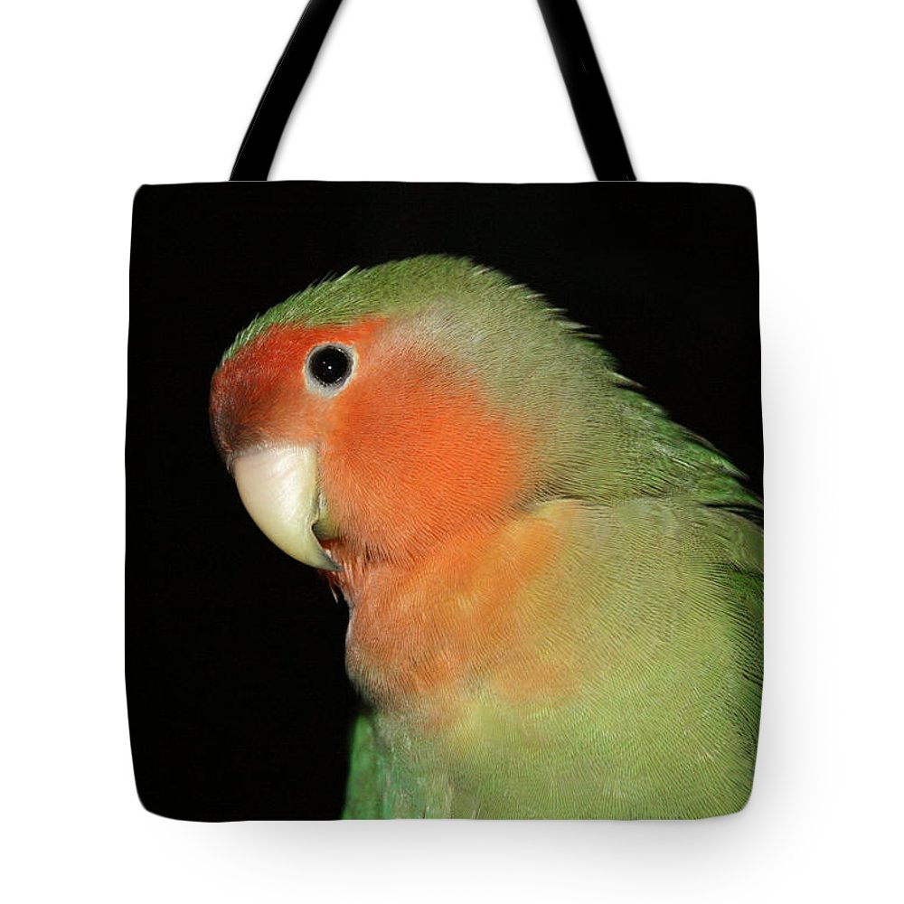 Bird Tote Bag featuring the photograph Peach Faced Lovebird by Terri Waters