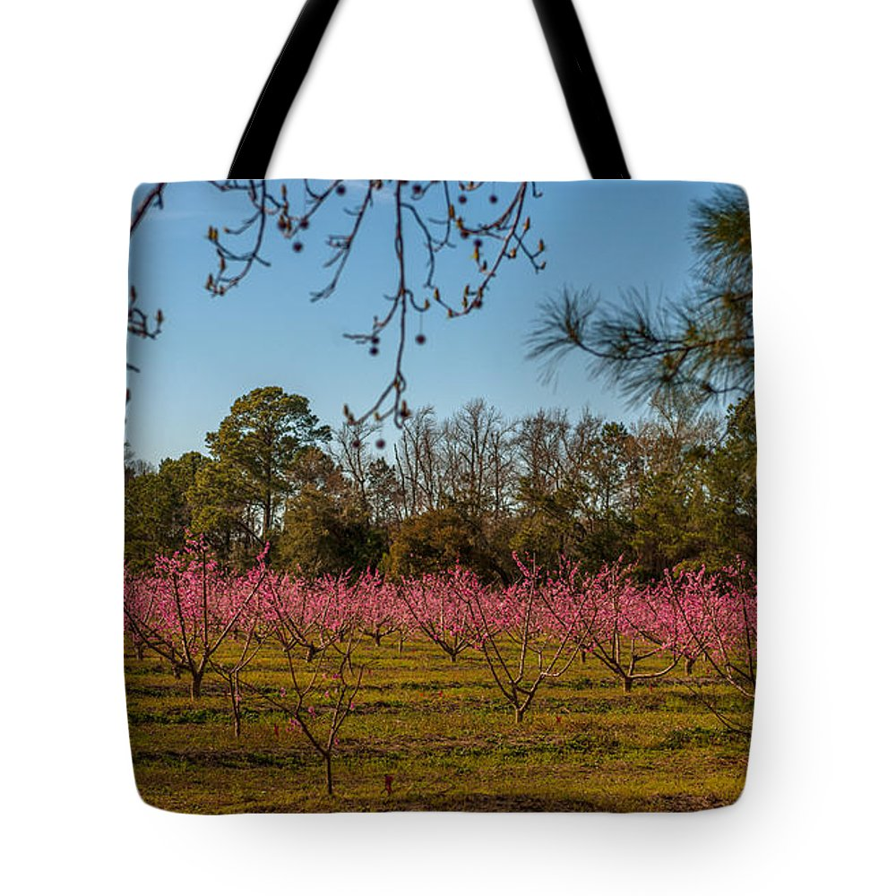 Peach Tree's Tote Bag featuring the photograph Peach Tree A Bloom by Dale Powell