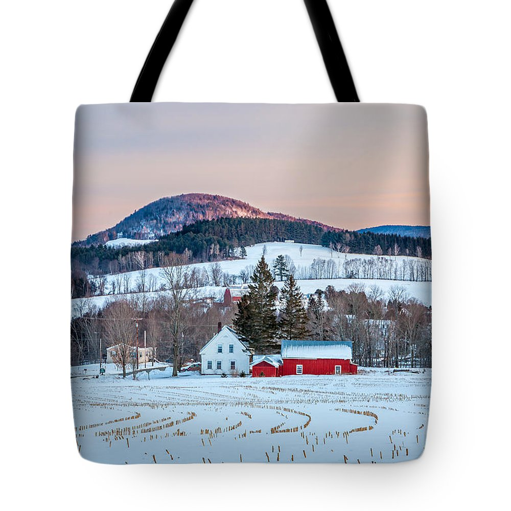 Agriculture Tote Bag featuring the photograph Peachan In Snow by Susan Cole Kelly