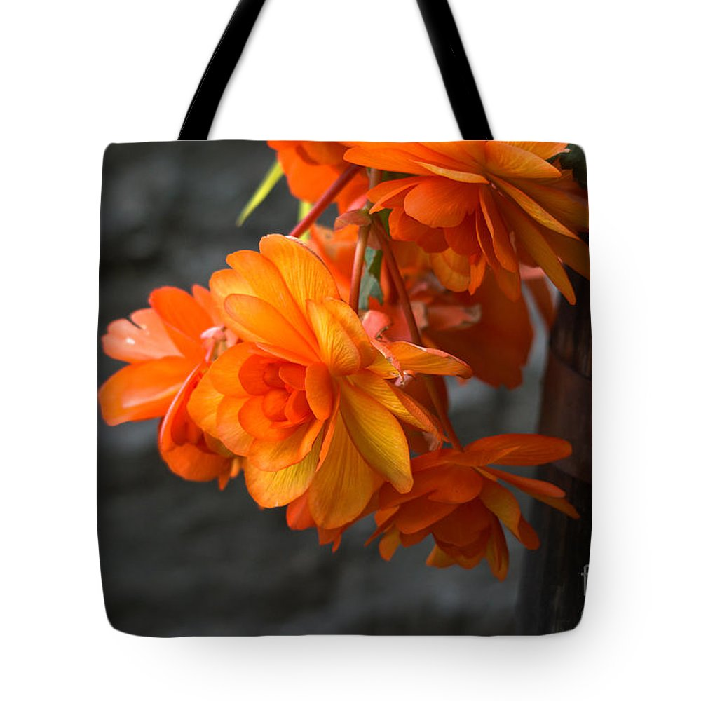 Begonias Tote Bag featuring the photograph Peachy Begonias by Cheryl Baxter