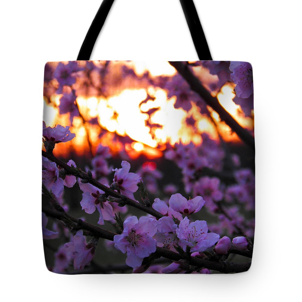 Peach Tote Bag featuring the photograph Peachy Sunset 3 by Nick Kirby