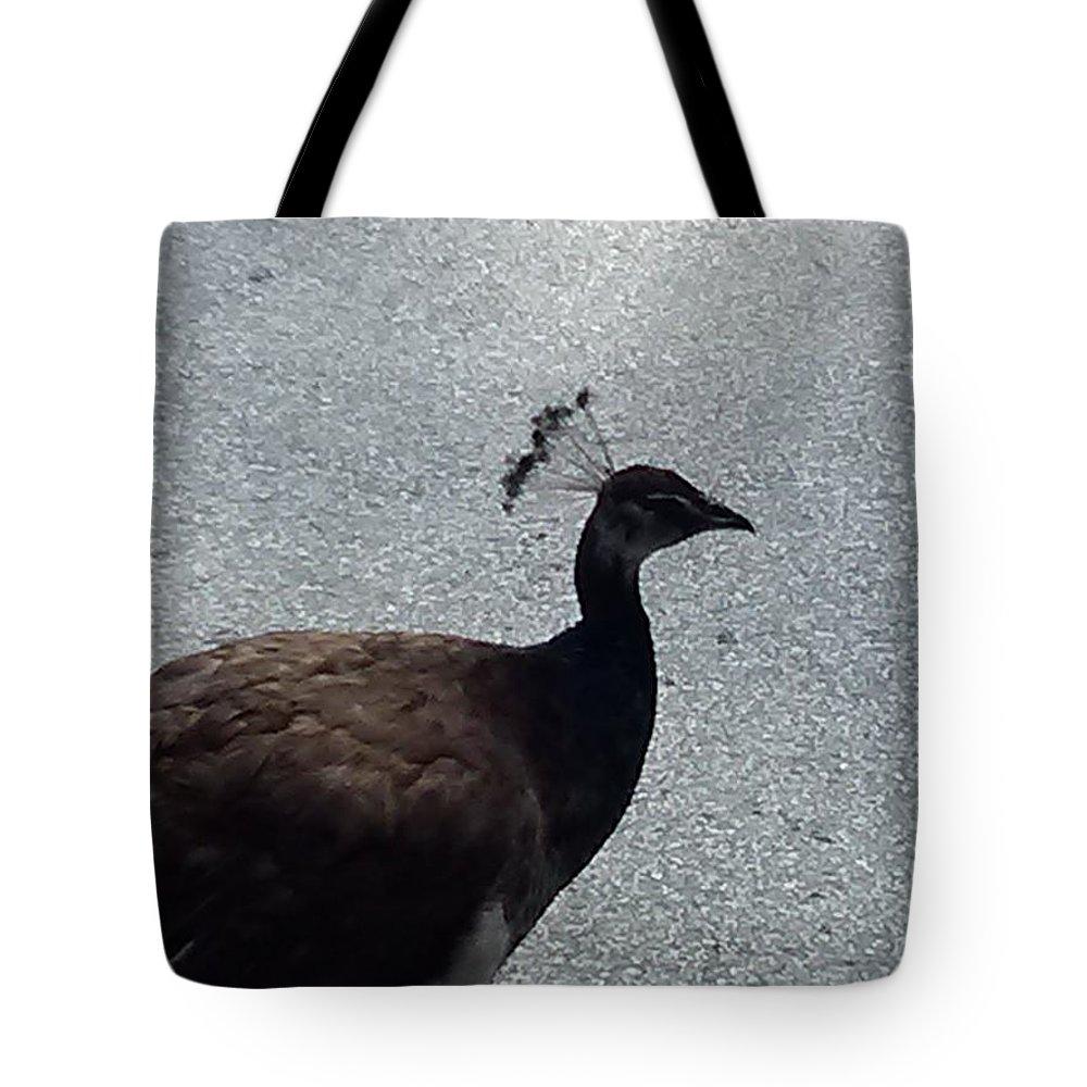 Bird Tote Bag featuring the photograph Peacock by Ann Hamlin