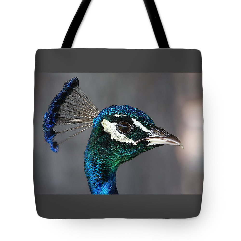 Peacock Tote Bag featuring the photograph Peacock Profile by John Cardamone